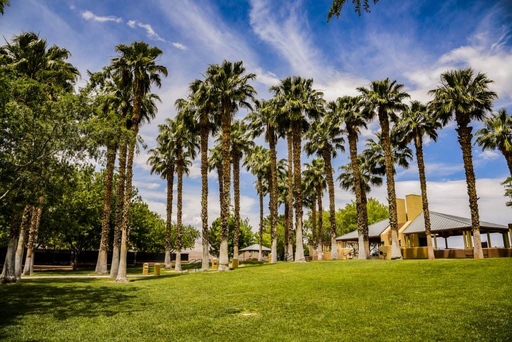 Summerlin-the-Hills-Park-trees